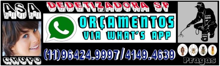 (                                                     11-Dedetizadora-sp-11-4149-4639-Grupo ASA